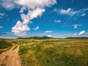 поле земля участок